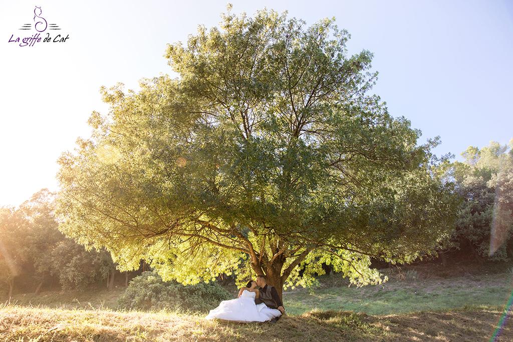 Trash_the_dress-arbre