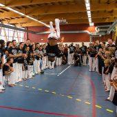 capoeira festival demonstration saut perilleux