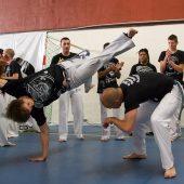 capoeira festival roda 3
