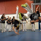 capoeira festival roda 4
