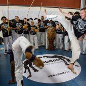 capoeira festival roda 5
