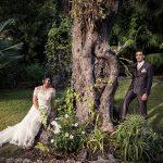 mariés arbre oliviers Menton